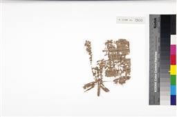 256.jpg?authroot=findit.library.yale.edu&parentfolder=digcoll:3125795&ip=18.212.90