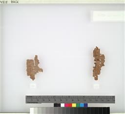 256.jpg?authroot=findit.library.yale.edu&parentfolder=digcoll:2767338&ip=107.23.176